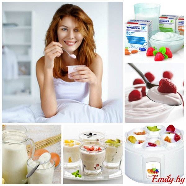 domashniy-yogurt-s-zakvaskoy-vivo-set